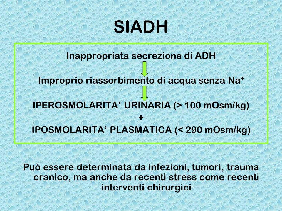 SIADH Inappropriata secrezione di ADH Improprio riassorbimento di acqua senza Na + IPEROSMOLARITA URINARIA (> 100 mOsm/kg) + IPOSMOLARITA PLASMATICA (