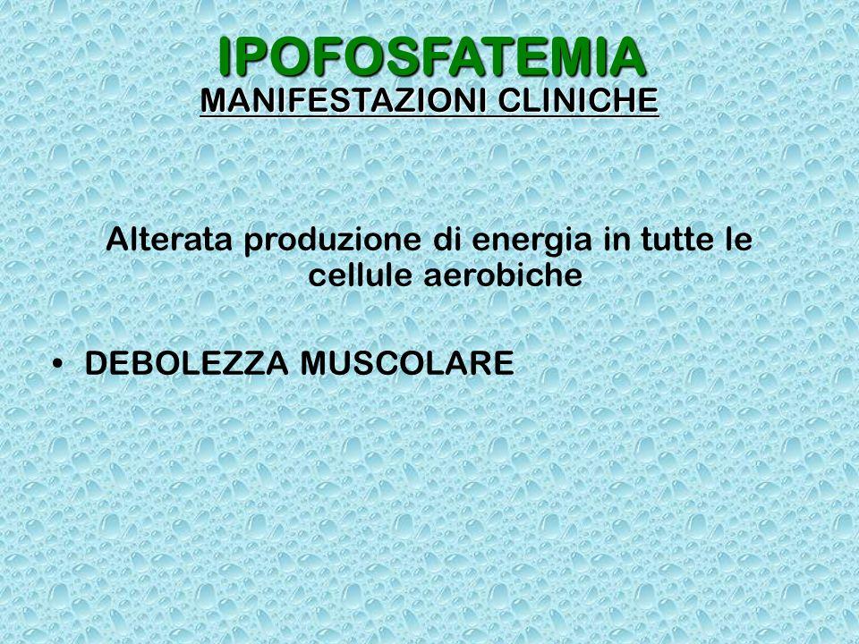 IPOFOSFATEMIA MANIFESTAZIONI CLINICHE Alterata produzione di energia in tutte le cellule aerobiche DEBOLEZZA MUSCOLARE