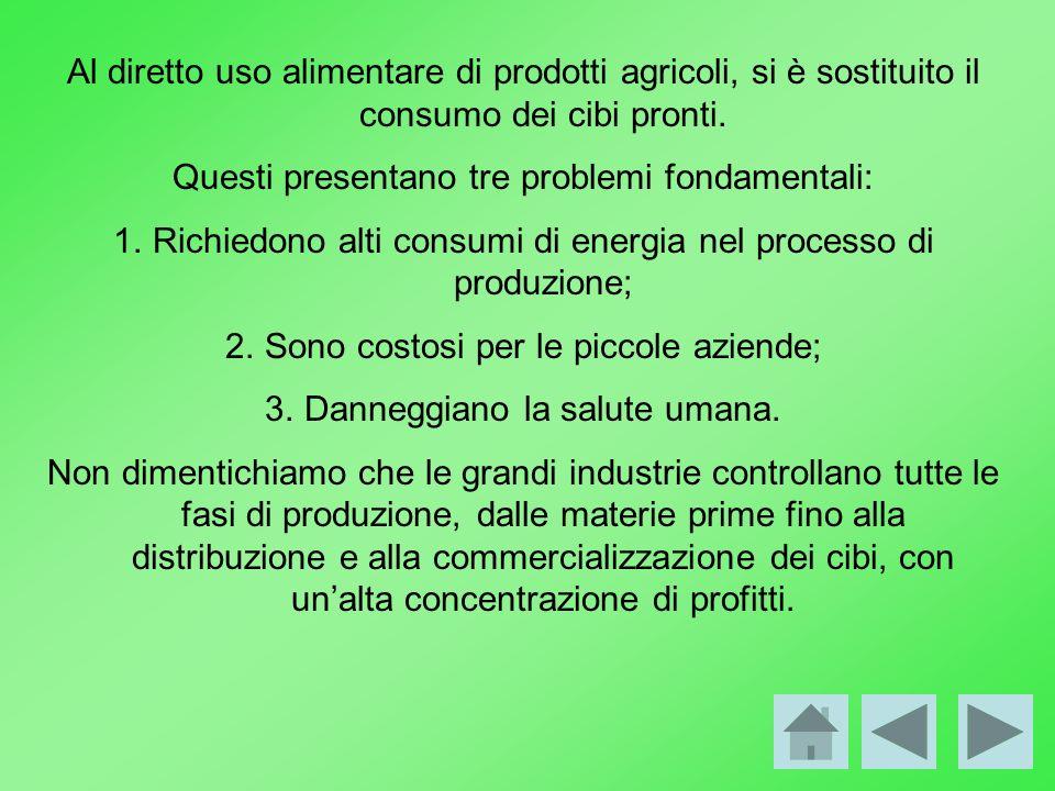 Al diretto uso alimentare di prodotti agricoli, si è sostituito il consumo dei cibi pronti. Questi presentano tre problemi fondamentali: 1.Richiedono