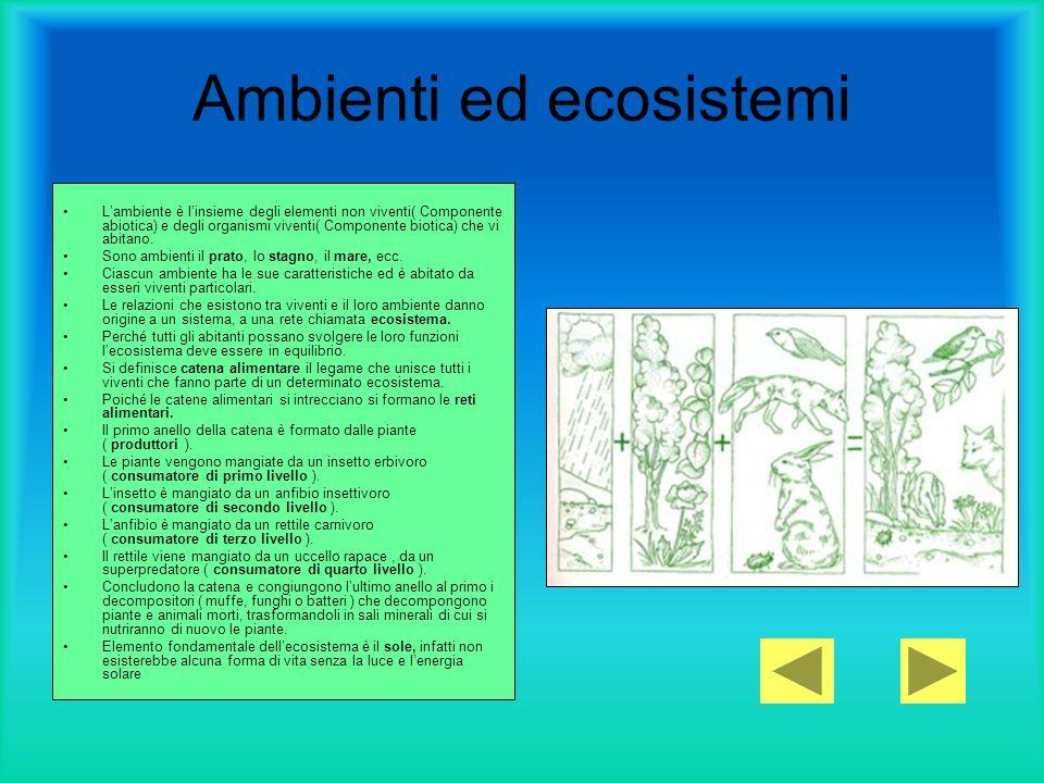 Ambienti ed ecosistemi Lambiente è linsieme degli elementi non viventi( Componente abiotica) e degli organismi viventi( Componente biotica) che vi abi