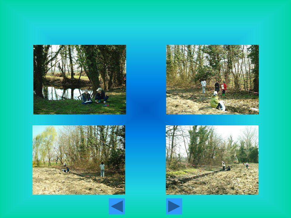 Pesca sul rio Fossalon