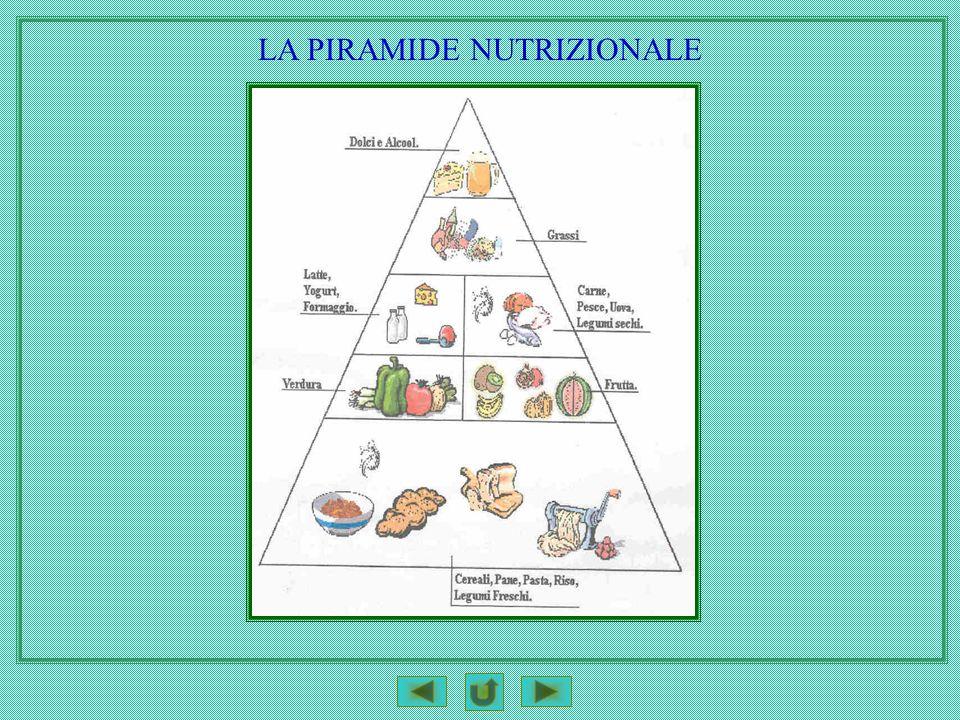 LA PIRAMIDE NUTRIZIONALE