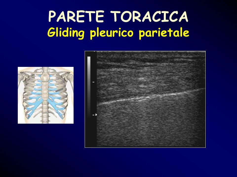 PARETE TORACICA Gliding pleurico parietale