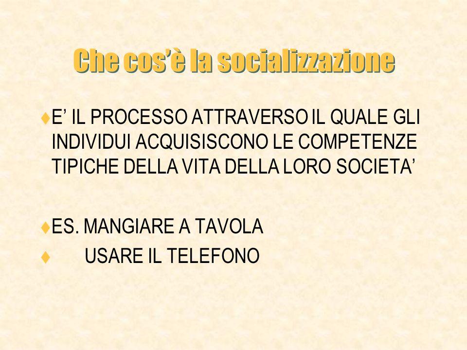 INDICE DEFINIZIONE SOCIALIZZAZIONE ED EDUCAZIONE CONTENUTI DELLA SOCIALIZZAZIONE LE AGENZIE DI SOCIALIZZAZIONE.