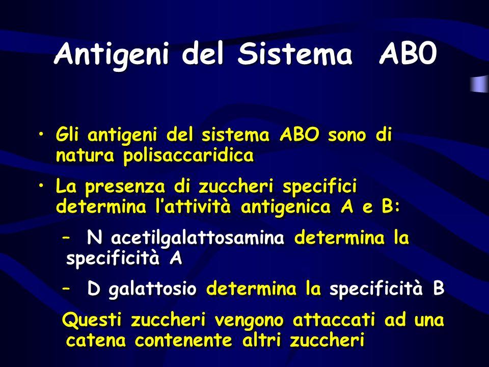 Antigeni del Sistema AB0 Gli antigeni del sistema ABO sono di natura polisaccaridica La presenza di zuccheri specifici determina lattività antigenica