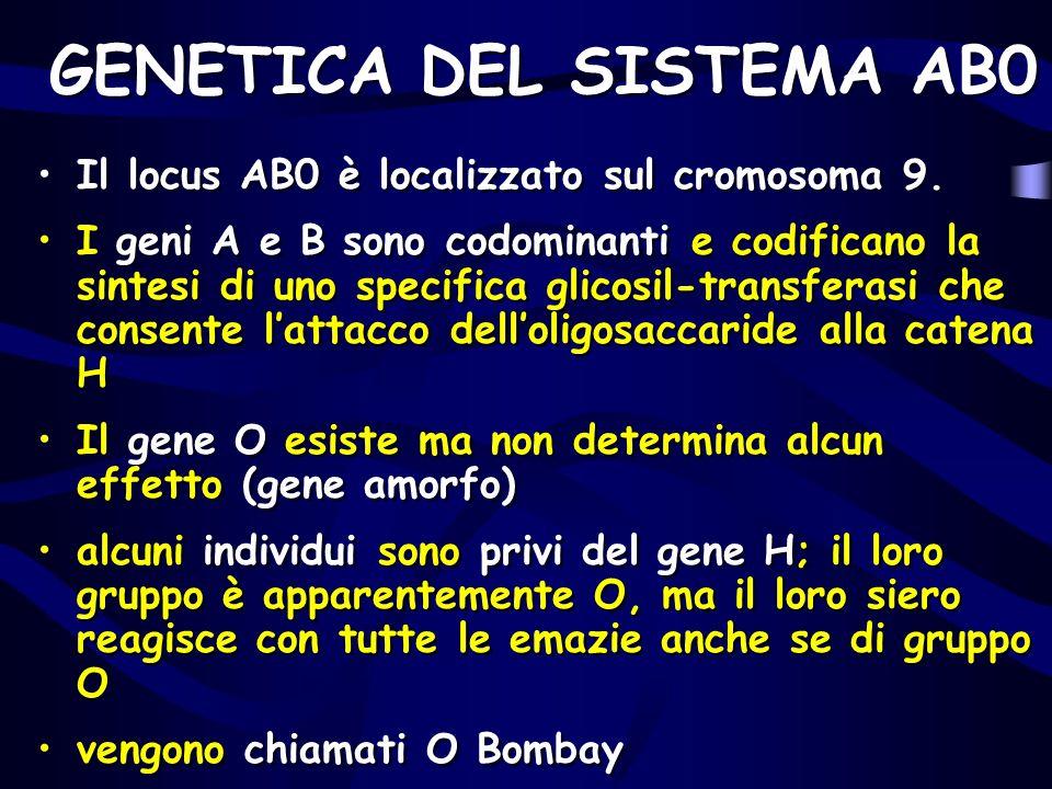 GENETICA DEL SISTEMA AB0 Il locus AB0 è localizzato sul cromosoma 9. I geni A e B sono codominanti e codificano la sintesi di uno specifica glicosil-t