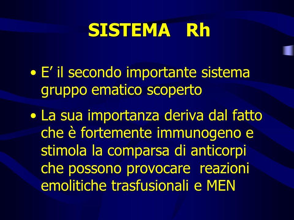 SISTEMA Rh E il secondo importante sistema gruppo ematico scoperto La sua importanza deriva dal fatto che è fortemente immunogeno e stimola la compars