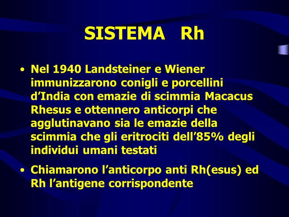 SISTEMA Rh Nel 1940 Landsteiner e Wiener immunizzarono conigli e porcellini dIndia con emazie di scimmia Macacus Rhesus e ottennero anticorpi che aggl