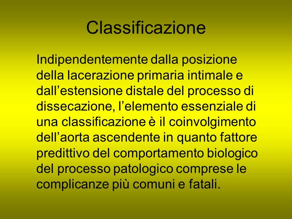 Classificazione Indipendentemente dalla posizione della lacerazione primaria intimale e dallestensione distale del processo di dissecazione, lelemento