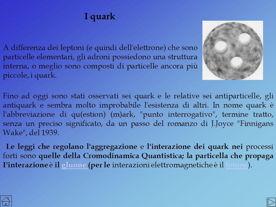I quark A differenza dei leptoni (e quindi dell'elettrone) che sono particelle elementari, gli adroni possiedono una struttura interna, o meglio sono