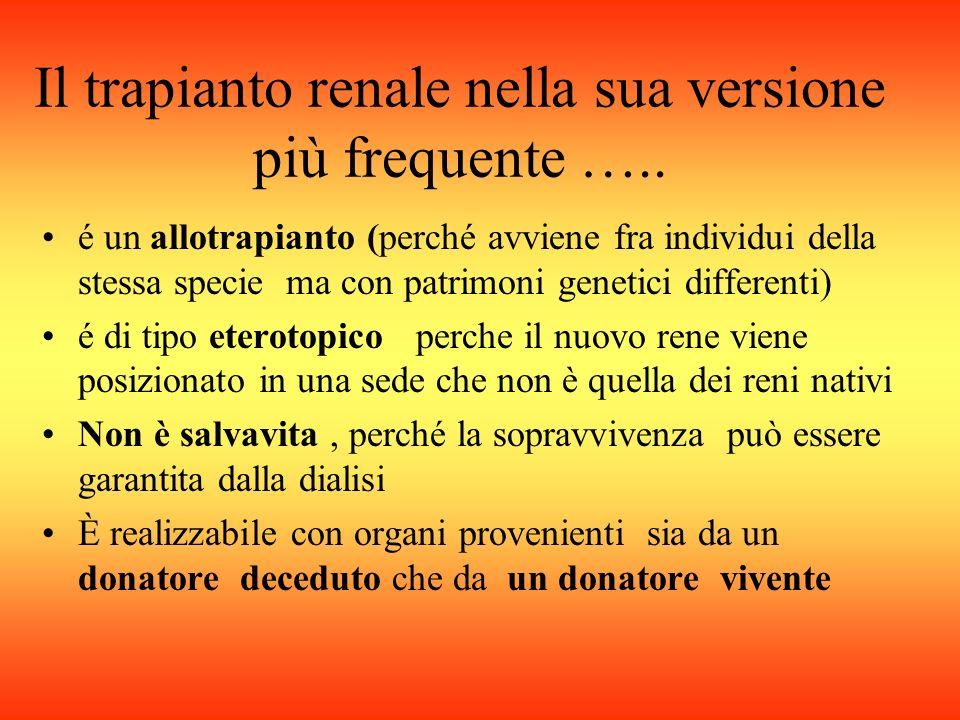 Il trapianto renale nella sua versione più frequente …..