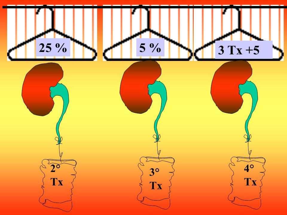 2° Tx 4° Tx 3° Tx 25 %5 % 3 Tx +5