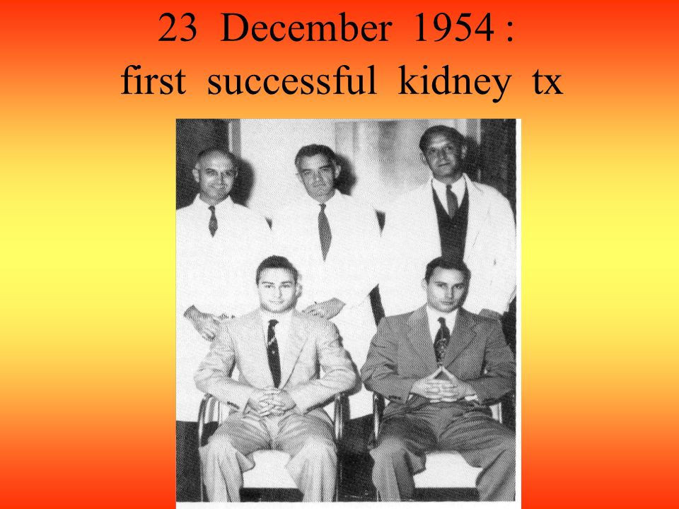 23 December 1954 : first successful kidney tx