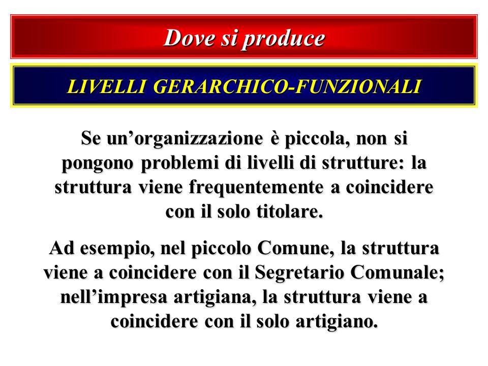 Dove si produce LIVELLI GERARCHICO-FUNZIONALI Se unorganizzazione è piccola, non si pongono problemi di livelli di strutture: la struttura viene frequ