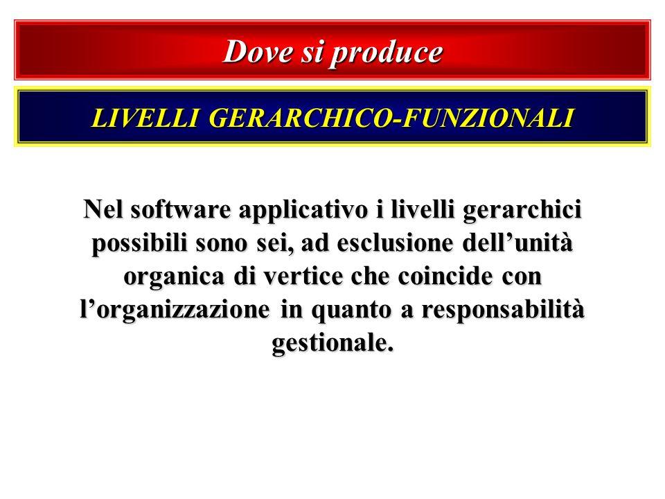 Dove si produce LIVELLI GERARCHICO-FUNZIONALI Nel software applicativo i livelli gerarchici possibili sono sei, ad esclusione dellunità organica di ve