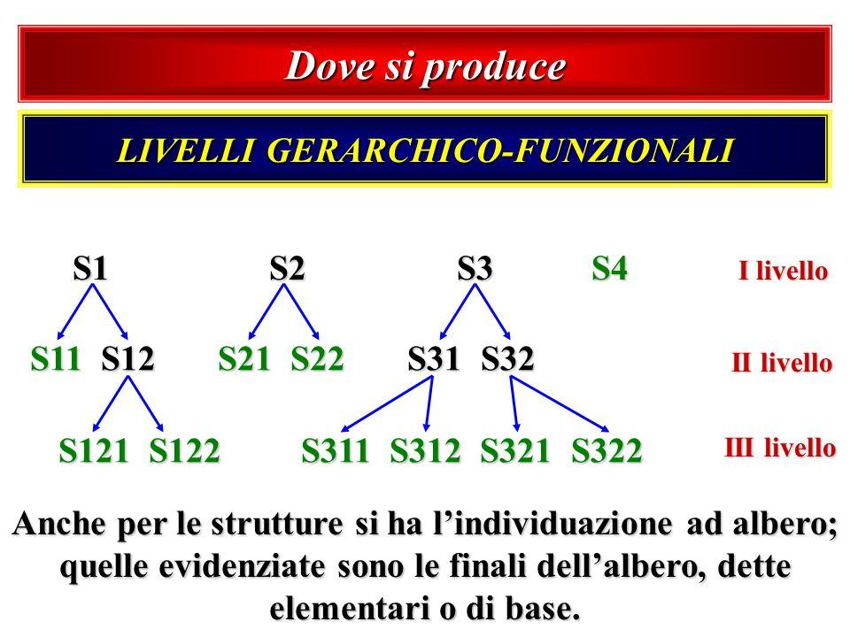 Dove si produce LIVELLI GERARCHICO-FUNZIONALI S1 S2 S3 S4 I livello S11 S12 S21 S22 S31 S32 II livello S121 S122 S311 S312 S321 S322 III livello Anche