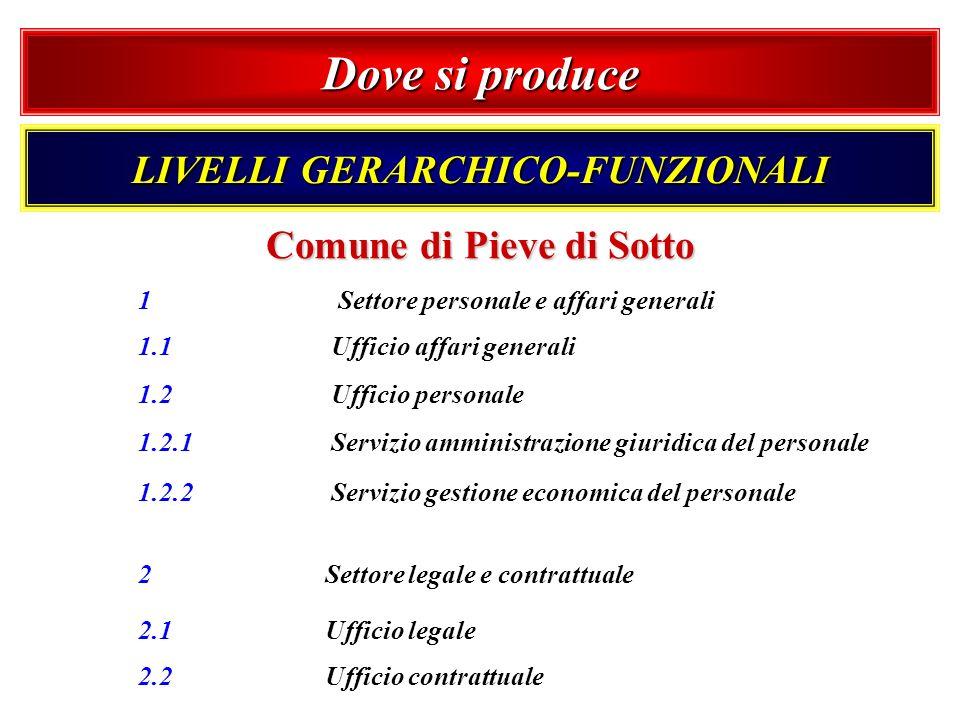 1 Settore personale e affari generali 1.1 Ufficio affari generali 1.2 Ufficio personale 1.2.1 Servizio amministrazione giuridica del personale 1.2.2 S