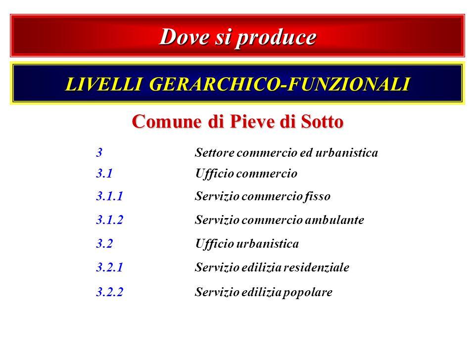 Dove si produce LIVELLI GERARCHICO-FUNZIONALI Comune di Pieve di Sotto 3 Settore commercio ed urbanistica 3.1 Ufficio commercio 3.1.1 Servizio commerc