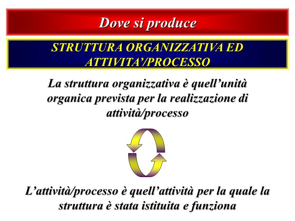 Dove si produce STRUTTURA ORGANIZZATIVA ED ATTIVITA/PROCESSO La struttura organizzativa è quellunità organica prevista per la realizzazione di attivit