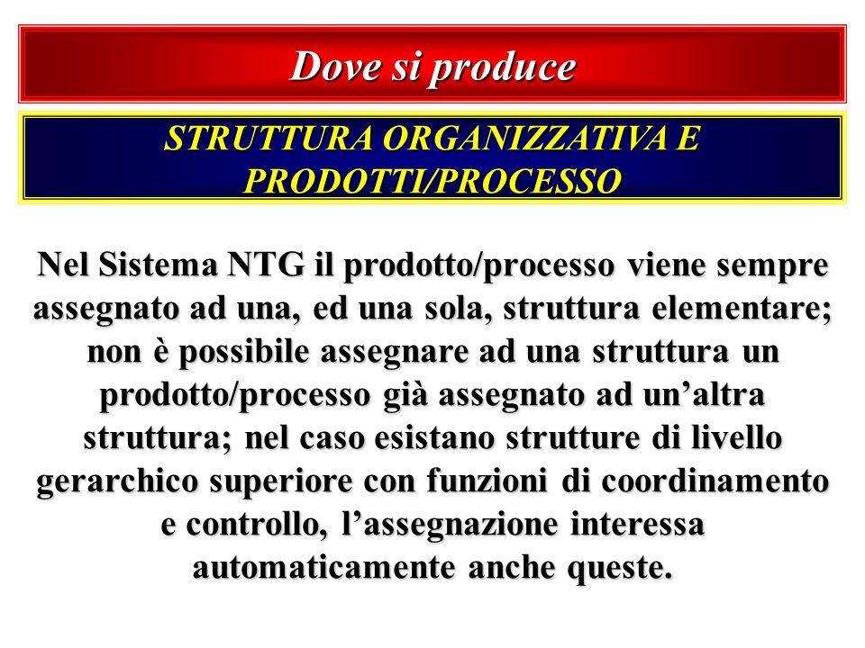 Dove si produce STRUTTURA ORGANIZZATIVA E PRODOTTI/PROCESSO Nel Sistema NTG il prodotto/processo viene sempre assegnato ad una, ed una sola, struttura