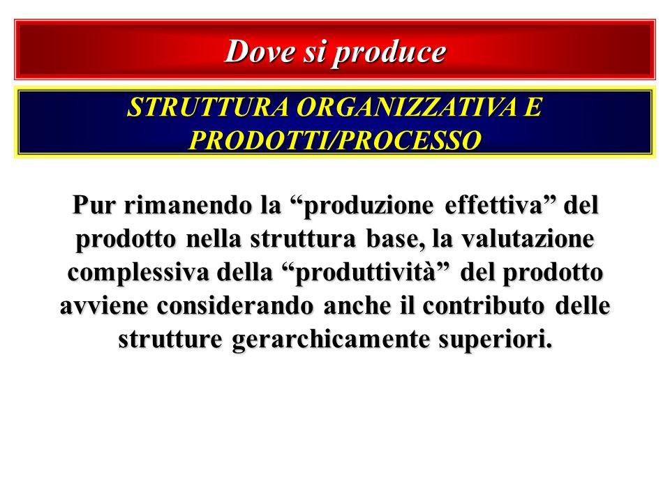 Dove si produce STRUTTURA ORGANIZZATIVA E PRODOTTI/PROCESSO Pur rimanendo la produzione effettiva del prodotto nella struttura base, la valutazione co