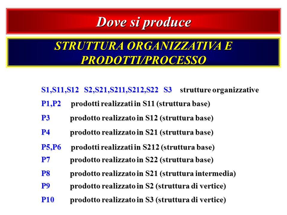 Dove si produce STRUTTURA ORGANIZZATIVA E PRODOTTI/PROCESSO S1,S11,S12 S2,S21,S211,S212,S22 S3 strutture organizzative P1,P2 prodotti realizzati in S1