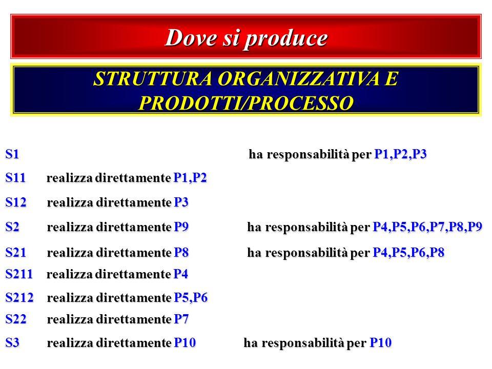 Dove si produce STRUTTURA ORGANIZZATIVA E PRODOTTI/PROCESSO S1 ha responsabilità per P1,P2,P3 S11 realizza direttamente P1,P2 S12 realizza direttament