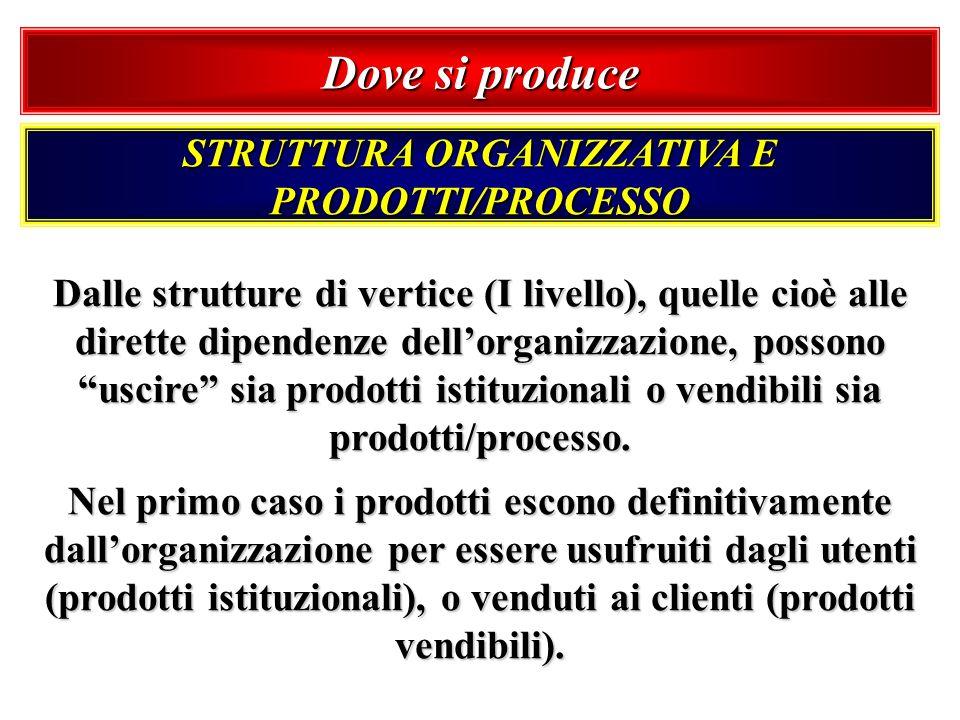 Dove si produce STRUTTURA ORGANIZZATIVA E PRODOTTI/PROCESSO Dalle strutture di vertice (I livello), quelle cioè alle dirette dipendenze dellorganizzaz