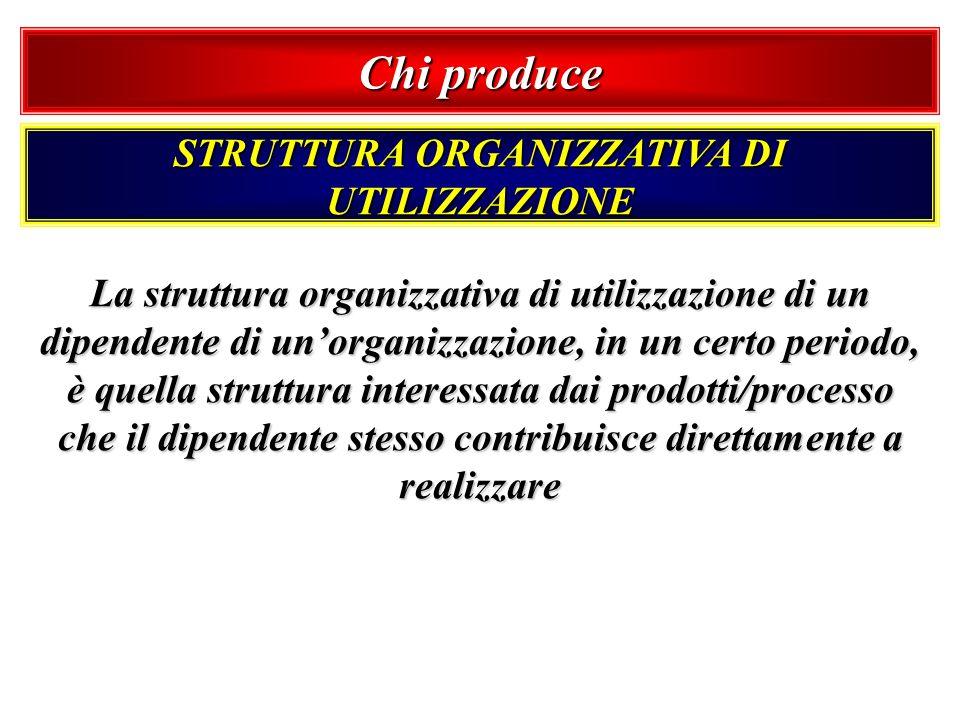 Chi produce STRUTTURA ORGANIZZATIVA DI UTILIZZAZIONE La struttura organizzativa di utilizzazione di un dipendente di unorganizzazione, in un certo per