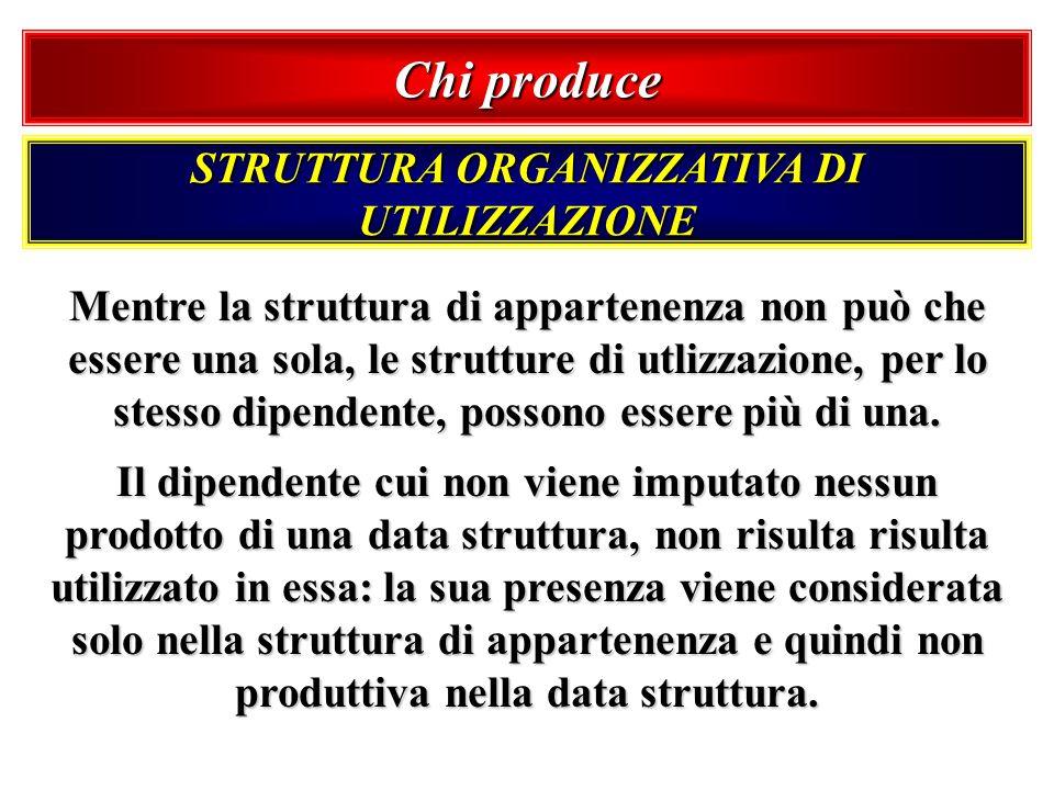 Chi produce STRUTTURA ORGANIZZATIVA DI UTILIZZAZIONE Mentre la struttura di appartenenza non può che essere una sola, le strutture di utlizzazione, pe