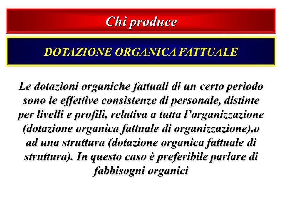 Chi produce DOTAZIONE ORGANICA FATTUALE Le dotazioni organiche fattuali di un certo periodo sono le effettive consistenze di personale, distinte per l