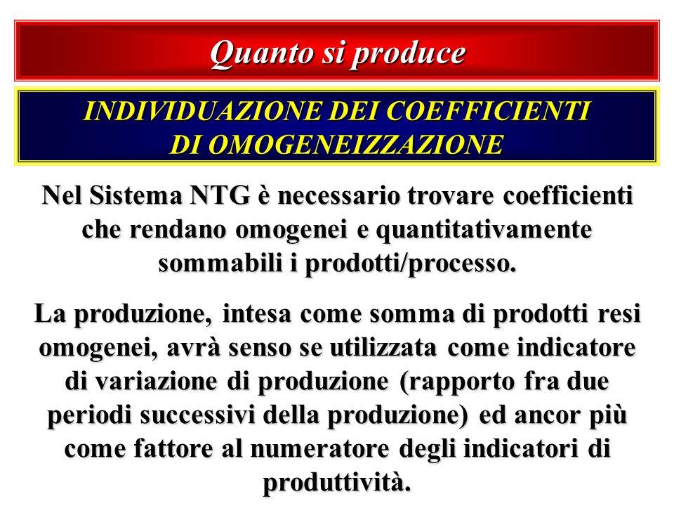 Quanto si produce Nel Sistema NTG è necessario trovare coefficienti che rendano omogenei e quantitativamente sommabili i prodotti/processo. La produzi