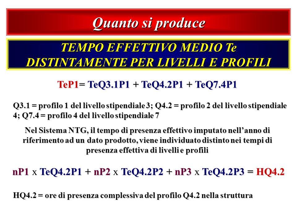 Quanto si produce TEMPO EFFETTIVO MEDIO Te DISTINTAMENTE PER LIVELLI E PROFILI TeP1= TeQ3.1P1 + TeQ4.2P1 + TeQ7.4P1 Q3.1 = profilo 1 del livello stipe