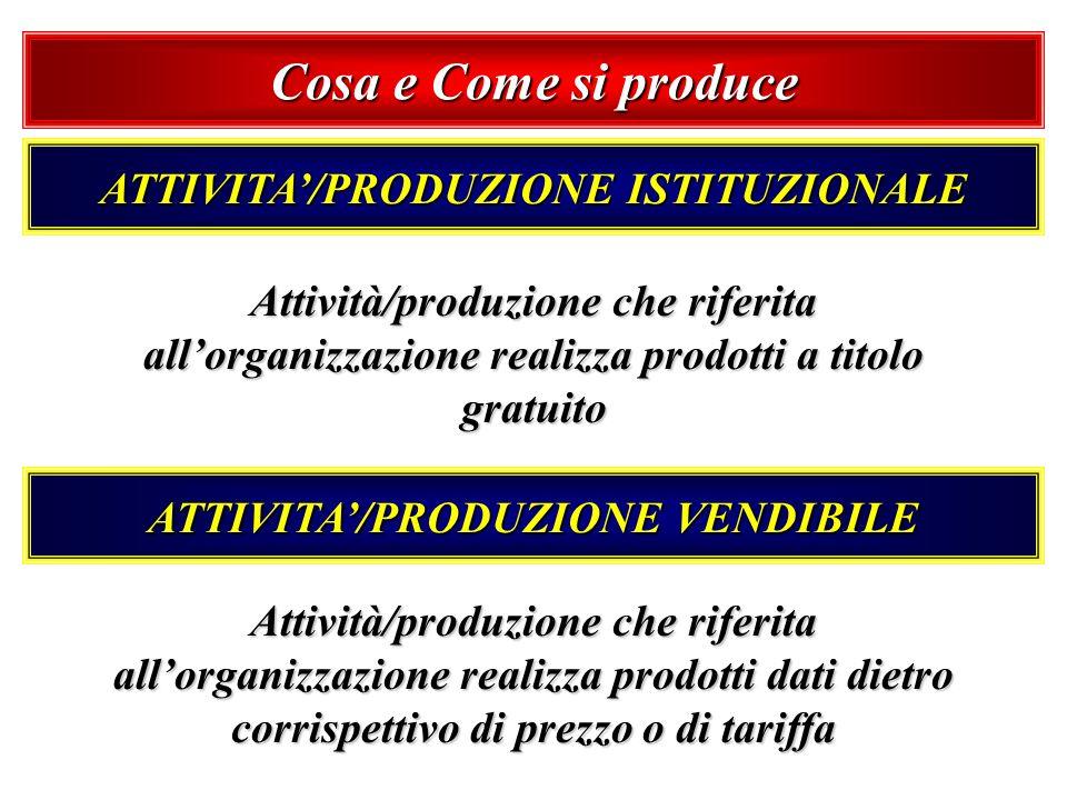 Cosa e Come si produce ATTIVITA/PRODUZIONE ISTITUZIONALE Attività/produzione che riferita allorganizzazione realizza prodotti a titolo gratuito ATTIVI