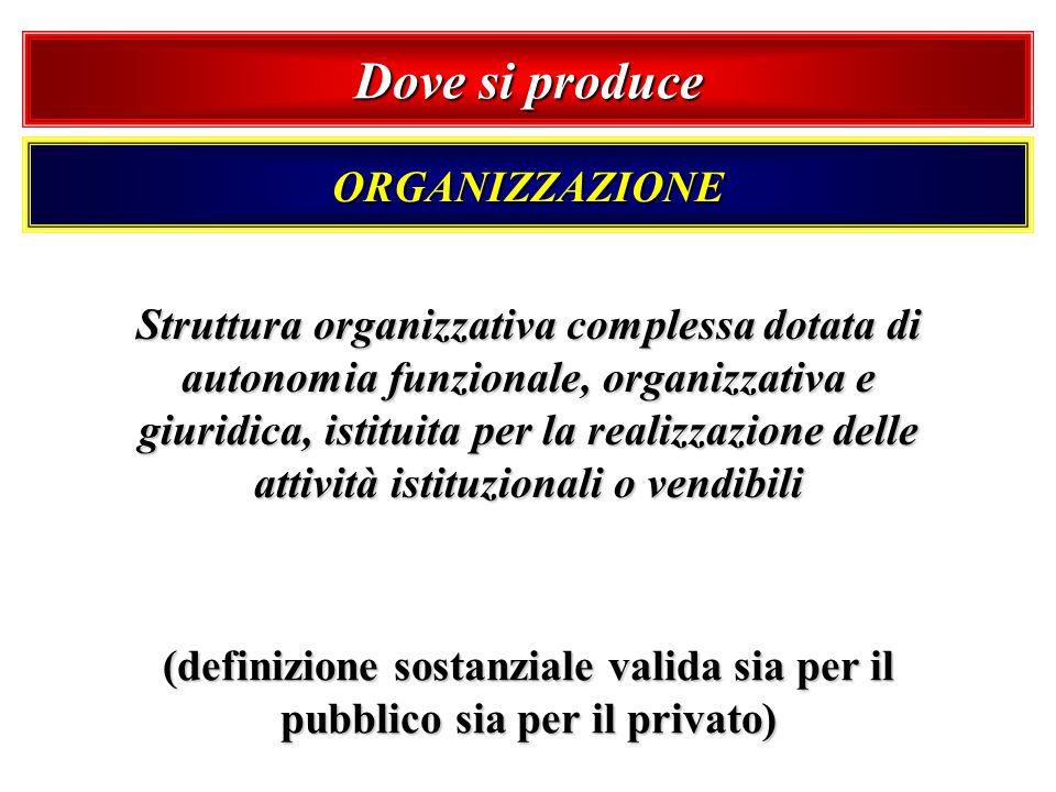 Dove si produce ORGANIZZAZIONE Struttura organizzativa complessa dotata di autonomia funzionale, organizzativa e giuridica, istituita per la realizzaz