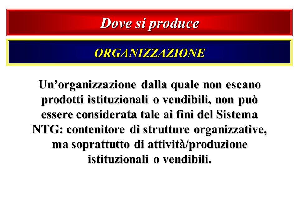 Dove si produce ORGANIZZAZIONE Unorganizzazione dalla quale non escano prodotti istituzionali o vendibili, non può essere considerata tale ai fini del