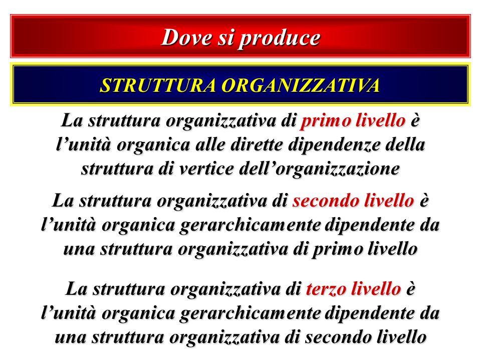 Dove si produce STRUTTURA ORGANIZZATIVA La struttura organizzativa di primo livello è lunità organica alle dirette dipendenze della struttura di verti