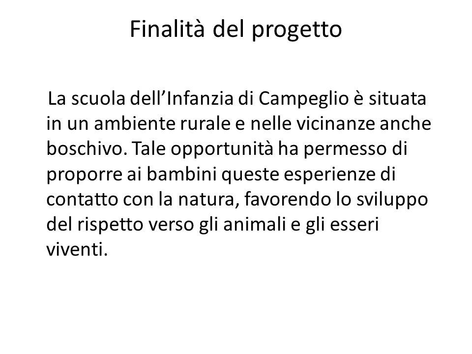 Caratteristiche del progetto Continuità : il progetto si è posto in continuità con quello presentato lanno precedente,riguardante gli animali della fattoria.