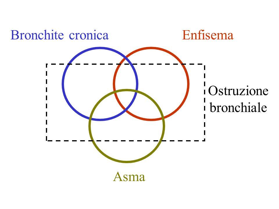 Asma Bronchite cronicaEnfisema Ostruzione bronchiale
