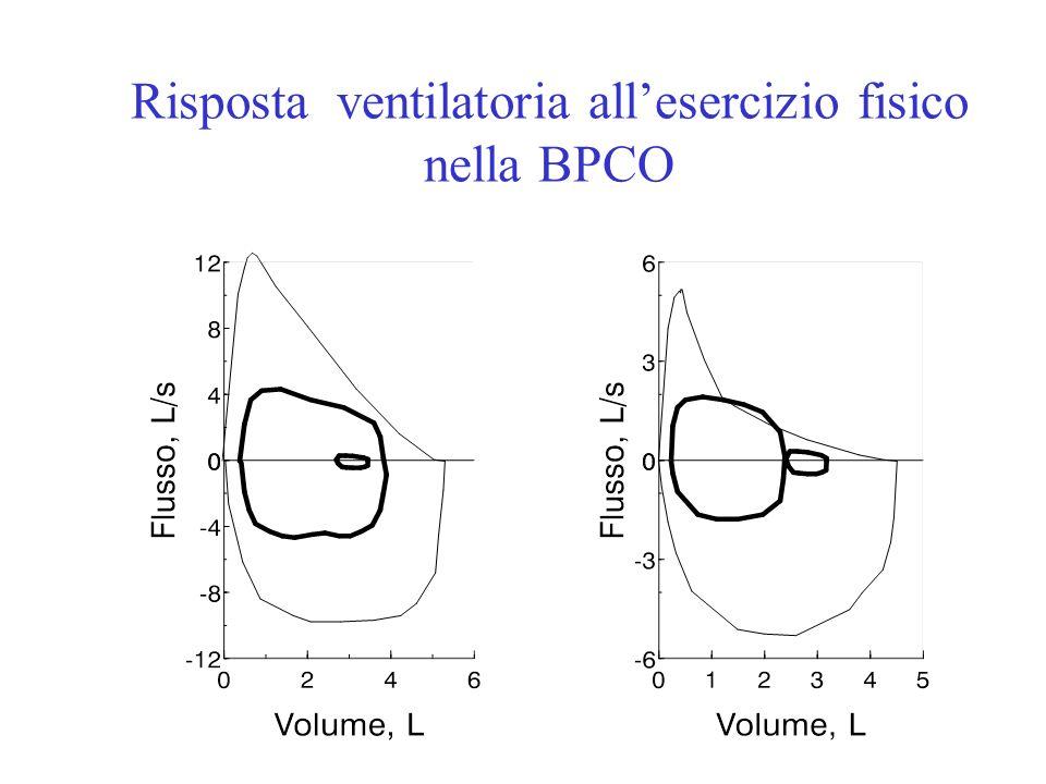 ODonnell et al., AJRCCM 2001 Risposta ventilatoria allesercizio fisico nella BPCO