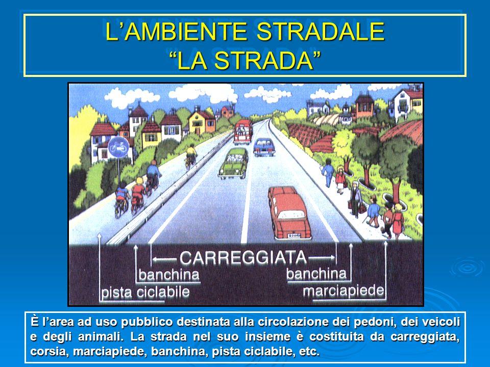 LAMBIENTE STRADALE LA STRADA È larea ad uso pubblico destinata alla circolazione dei pedoni, dei veicoli e degli animali. La strada nel suo insieme è