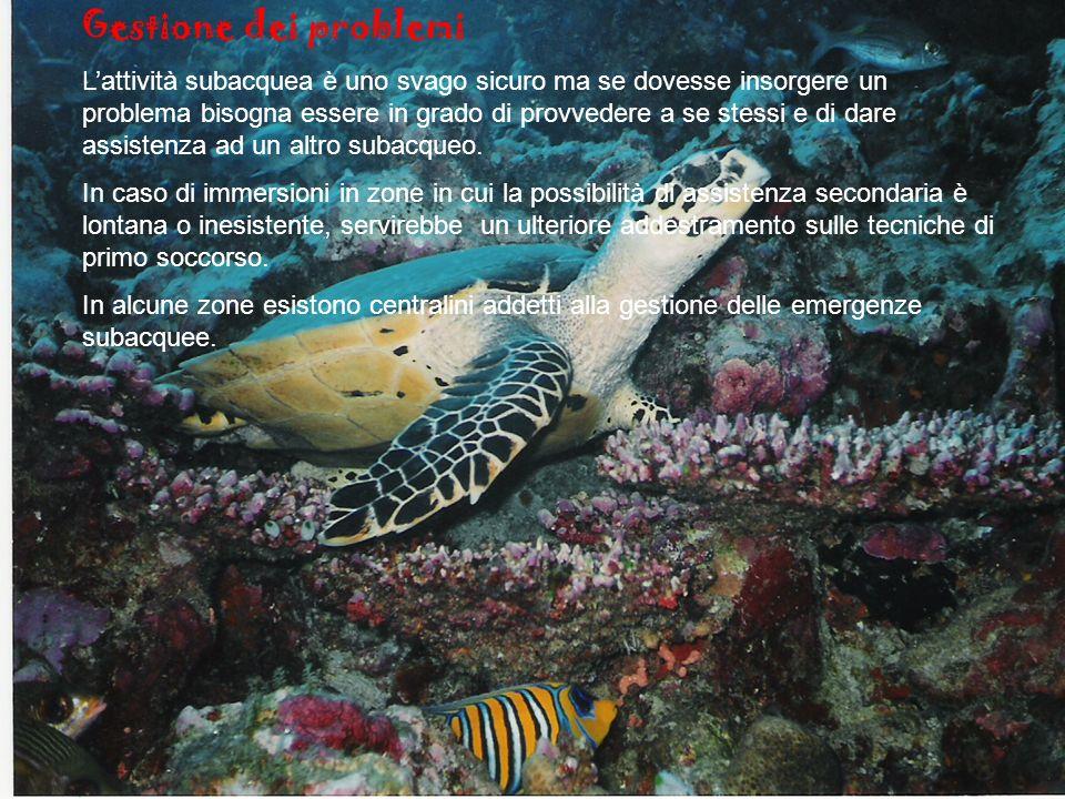 Gestione dei problemi Lattività subacquea è uno svago sicuro ma se dovesse insorgere un problema bisogna essere in grado di provvedere a se stessi e di dare assistenza ad un altro subacqueo.