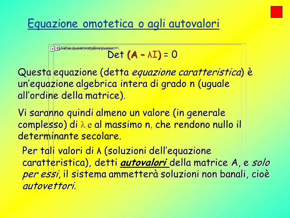 Equazione omotetica o agli autovalori Det (A – ) = 0 Det (A – λI) = 0 Questa equazione (detta equazione caratteristica) è unequazione algebrica intera