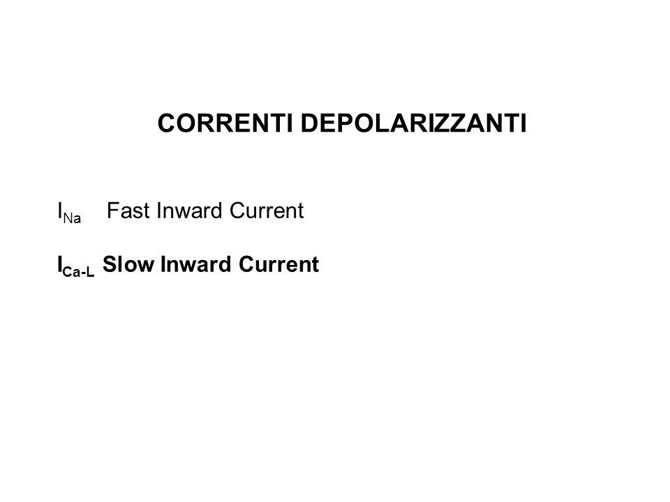 CORRENTI DEPOLARIZZANTI I Na Fast Inward Current I Ca-L Slow Inward Current
