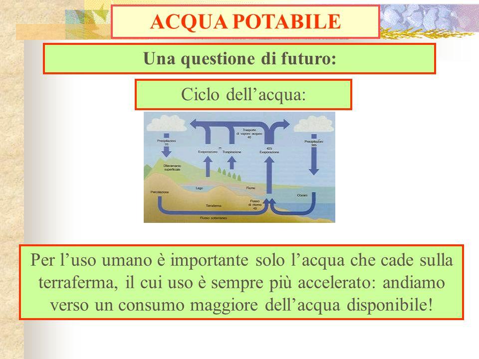 Una questione di futuro: ACQUA POTABILE Ciclo dellacqua: Per luso umano è importante solo lacqua che cade sulla terraferma, il cui uso è sempre più ac