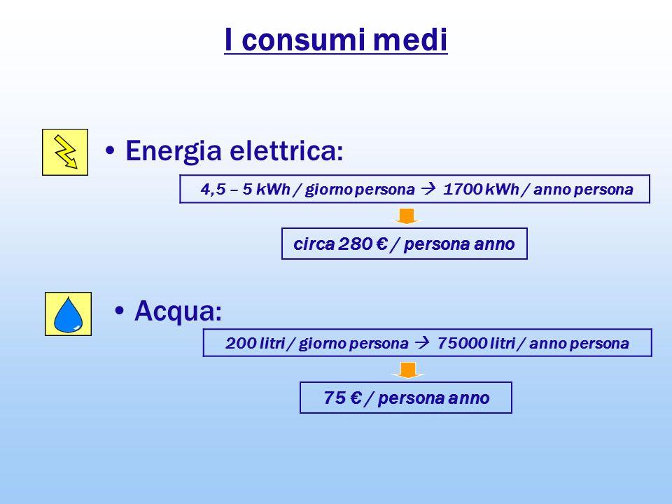 I consumi medi Energia elettrica: Acqua: 200 litri / giorno persona 75000 litri / anno persona 75 / persona anno 4,5 – 5 kWh / giorno persona 1700 kWh