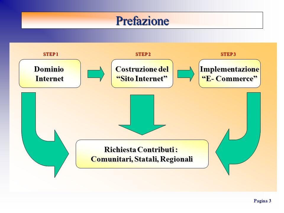 Prefazione Pagina 3 DominioInternet Costruzione del Sito Internet Implementazione E- Commerce Richiesta Contributi : Comunitari, Statali, Regionali ST