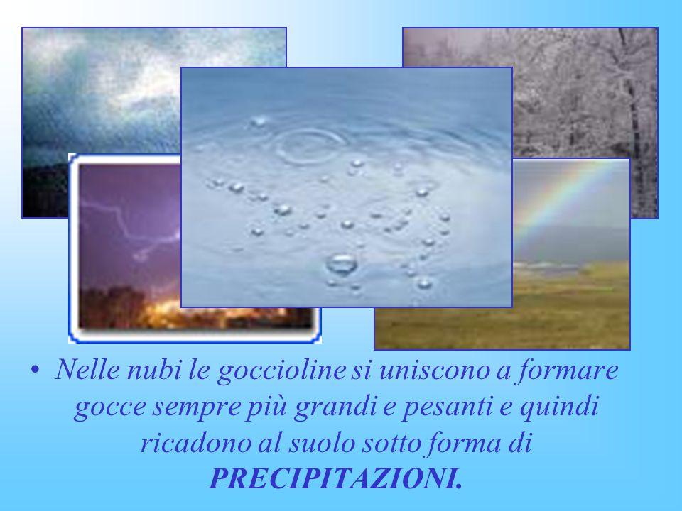 Nelle nubi le goccioline si uniscono a formare gocce sempre più grandi e pesanti e quindi ricadono al suolo sotto forma di PRECIPITAZIONI.