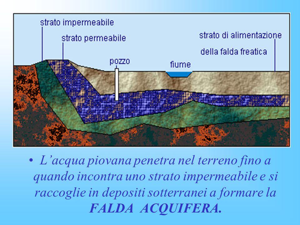 Lacqua piovana penetra nel terreno fino a quando incontra uno strato impermeabile e si raccoglie in depositi sotterranei a formare la FALDA ACQUIFERA.