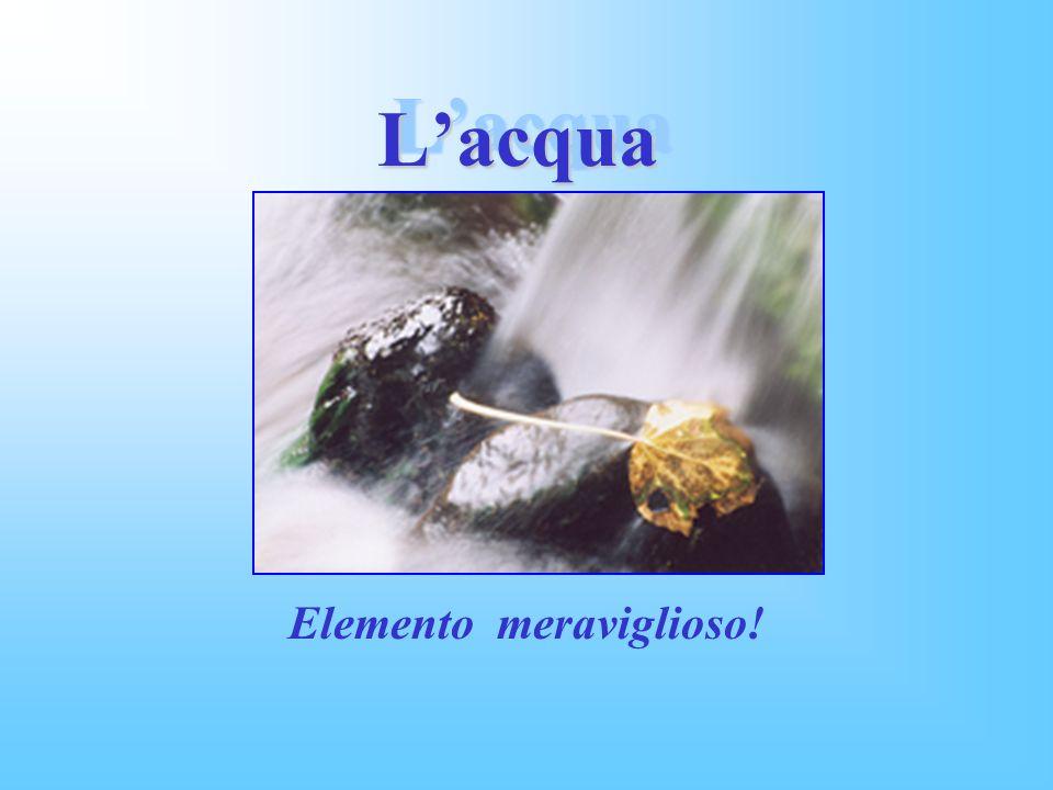 Lacqua Lacqua Elemento meraviglioso!
